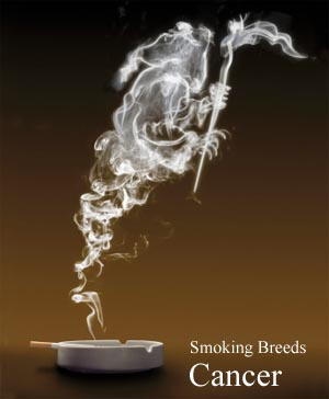 Smoking Breeds Cancer