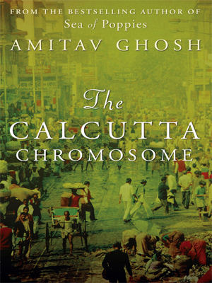amitav ghosh& 39s the shadow lines critical essays Using some of amitav ghosh's influential non-fictional writings to understand his own novels, this paper problematizes ghosh's works in terms of the crisis while versions of similar crises are visible in ghosh's novels including the shadow lines, the calcutta chromosome, and the hungry tide, i argue.