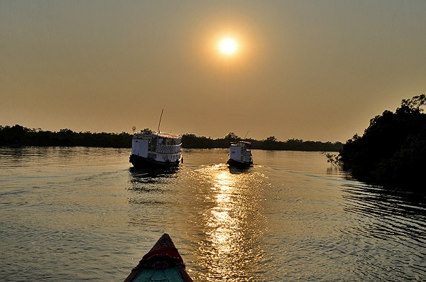 essay on sundarban Sundarbans: sundarbans, vast tract of forest and saltwater swamp forming the lower part of the padma (ganges [ganga])-brahmaputra river delta in southeastern west bengal state, northeastern india, and southern bangladesh.