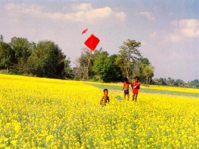 Kite_Flying_of_Bangladeshi_Village_Kids.jpg