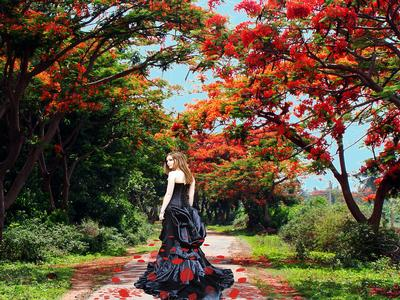beauty-of-nature-susmita-mishra.jpg