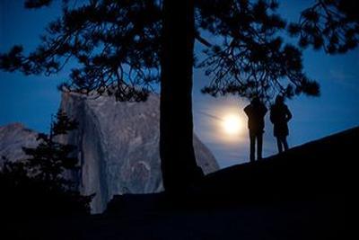 moonlit.jpg