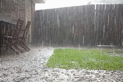 rain17.jpg
