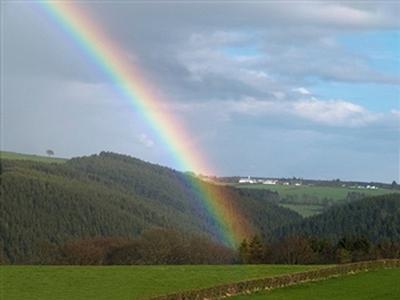 rainbow8.jpg