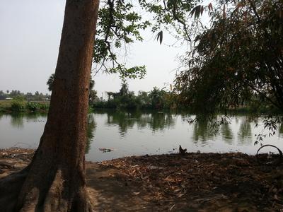 village_pond.jpg