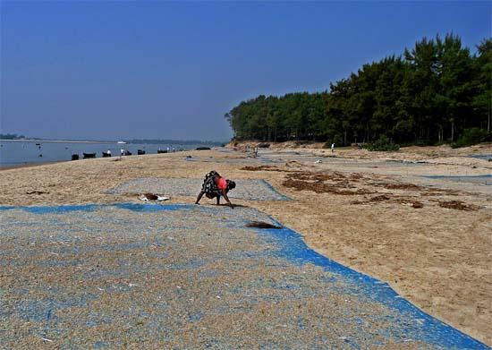 Coastal Trek Chandipur-on-Sea to New-Digha by Indrajit Bandyopadhyay